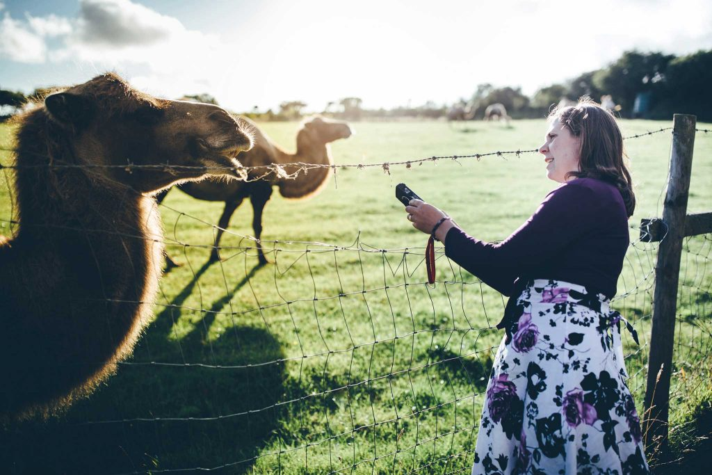Cornish Camels Wedding Photographer 51