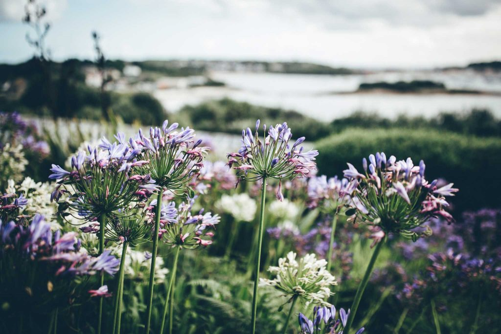 Isles of Scilly Wedding Photographer 47